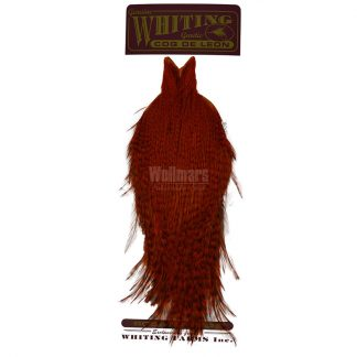 Whiting Coq De Leon Cape Badger Dyed Orange