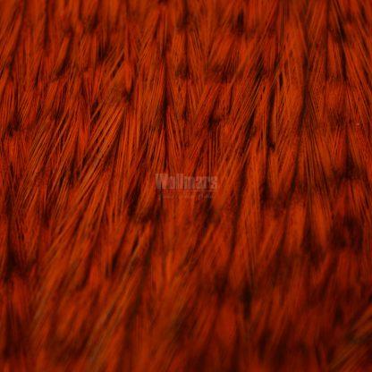 Whiting Coq De Leon Cape Badger Dyed Orange