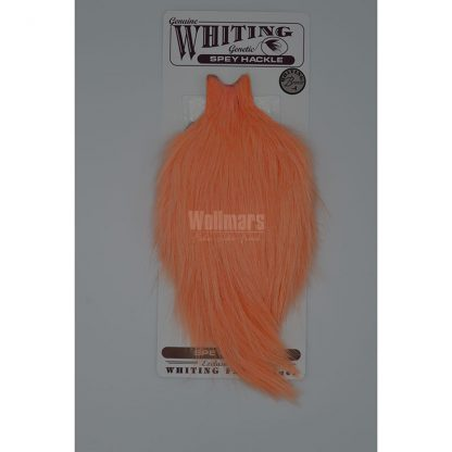 Whiting Bronze Spey Hackle Cape White Dyed Salmon