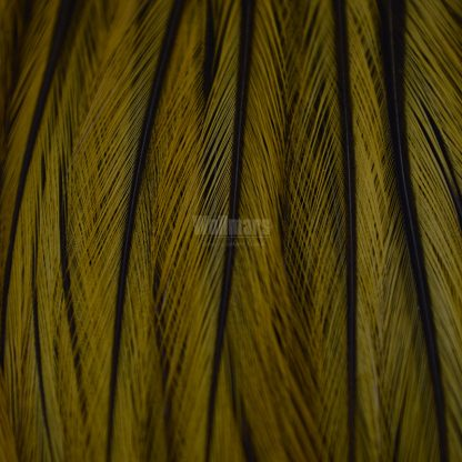 Whiting Bugger Pack Badger Dyed Golden Olive