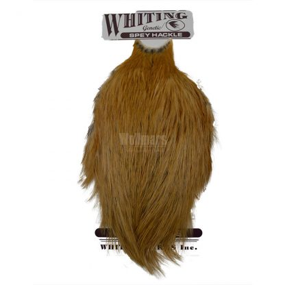 Whiting Spey Hackle Hen Cape Medium Ginger