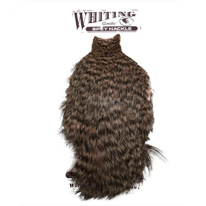 Whiting Spey Hackle Hen Cape Grizzly Dyed Salmon