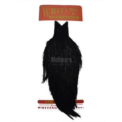 Whiting Hen Cape Black
