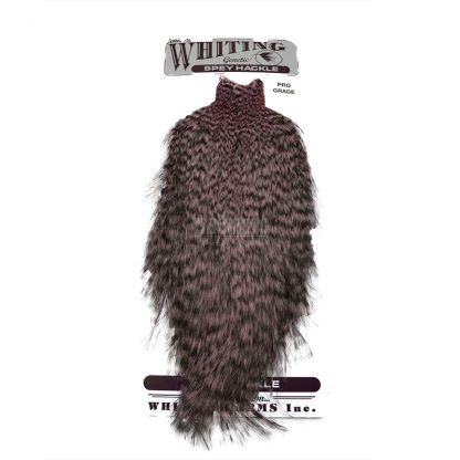 Whiting Spey Pro Grade Cape Grizzly Dyed Shell Pink