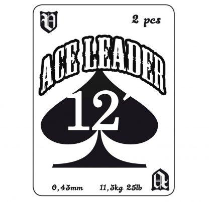 Vision-Ace-Leader-12