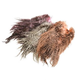 Whiting_Rooster_Bronze_Spey_Hackle_Saddle